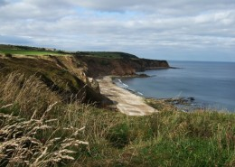 Beach_Co_Durham_MFarrell