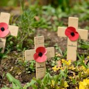 Remembrance cross with poppy